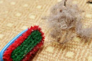 Remove Hair from Carpet Without Vacuum